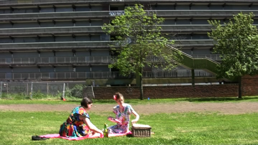 Picnic 20 min. Performance at Elephant Road Park, 23 May 2010 'Picnic' is a collaborative project by Evelina Simkute, Ella Horton Chandler and Ipek Hamzaoglu. It is one of the series of works produced within now demolished Heygate Estate in Elephant and Castle, London.
